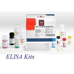 Kit ELISA de TSH