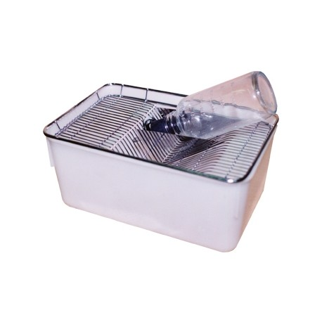 Caixa de Polipropileno para manejo de animais de laboratório
